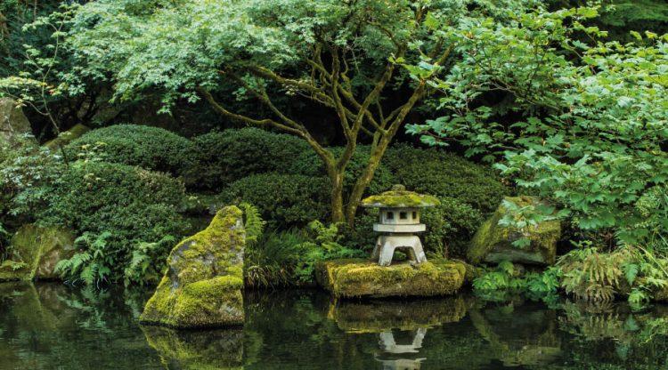 Le Pendu - Le jardin japonais, un voyage sensoriel à domicile